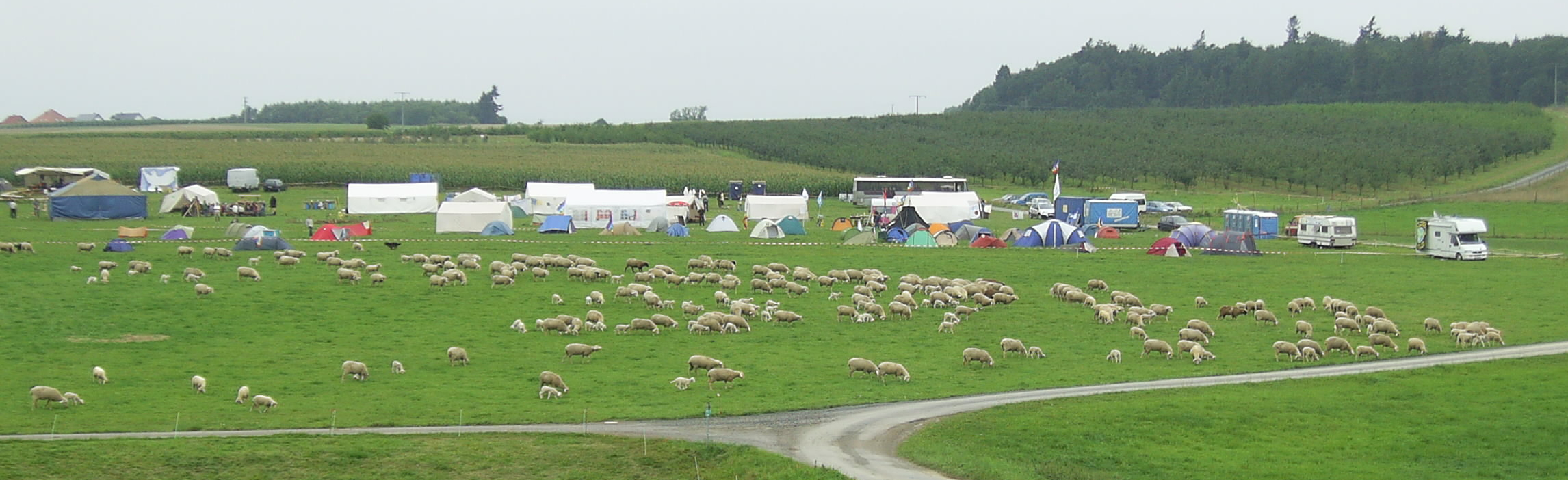 Camp 2008